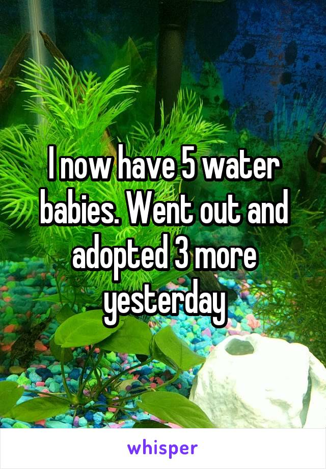 I now have 5 water babies. Went out and adopted 3 more yesterday