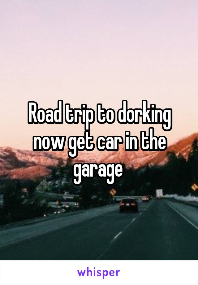 Road trip to dorking now get car in the garage