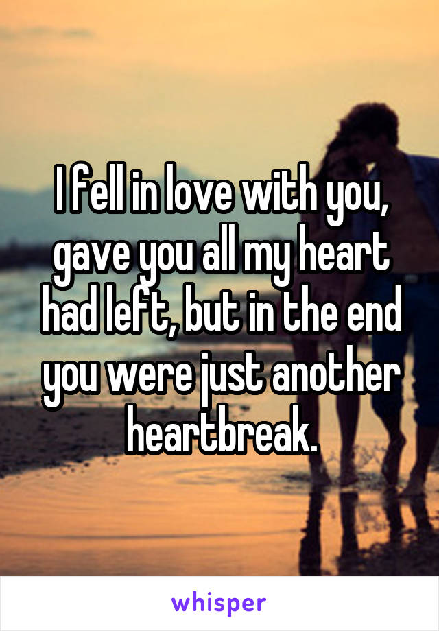 I fell in love with you, gave you all my heart had left, but in the end you were just another heartbreak.