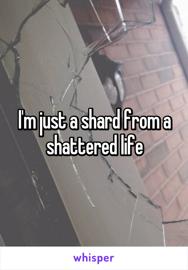 I'm just a shard from a shattered life