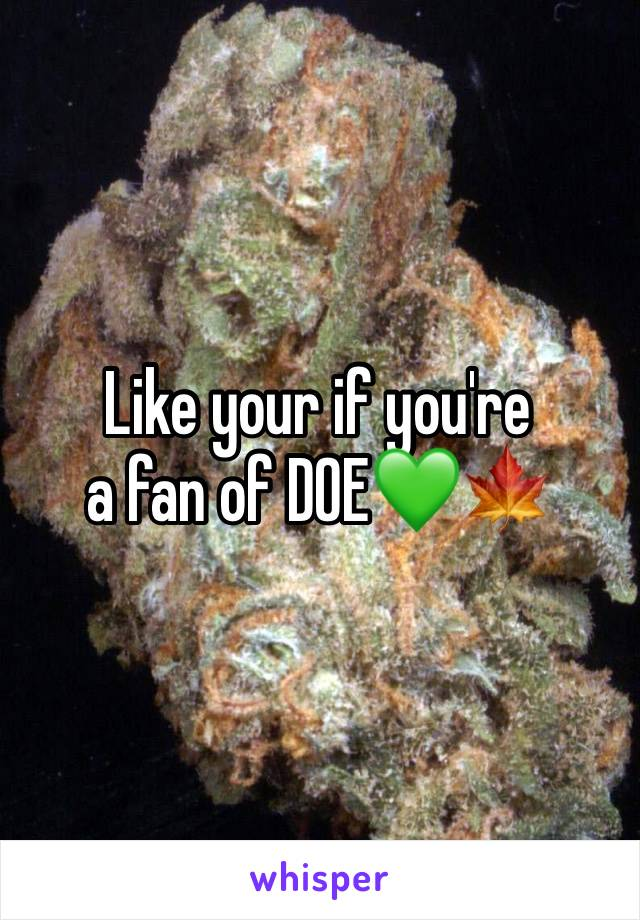 Like your if you're  a fan of DOE💚🍁