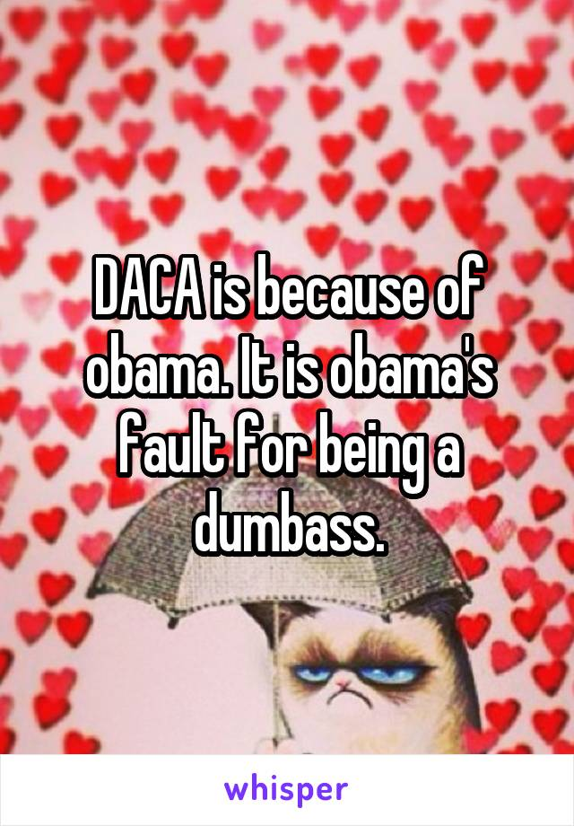 DACA is because of obama. It is obama's fault for being a dumbass.