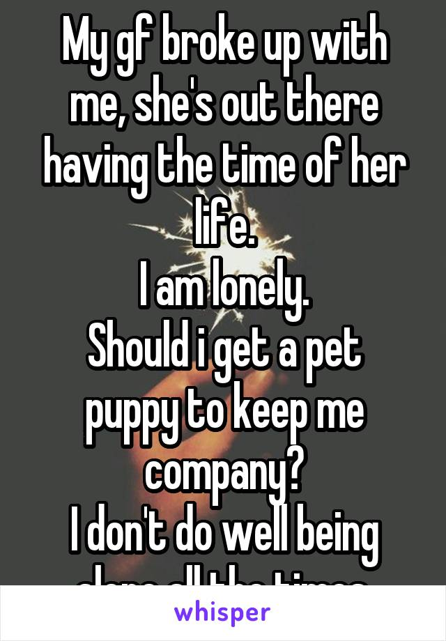 My gf broke up with me, she's out there having the time of her life. I am lonely. Should i get a pet puppy to keep me company? I don't do well being alone all the times.