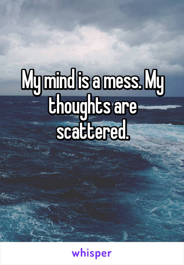 My mind is a mess. My thoughts are scattered.