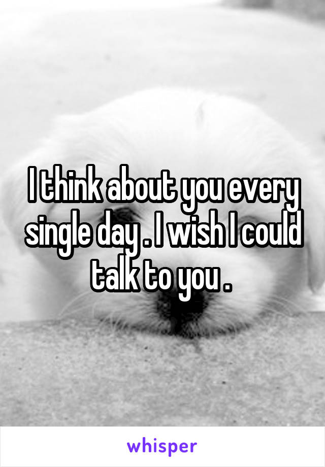 I think about you every single day . I wish I could talk to you .