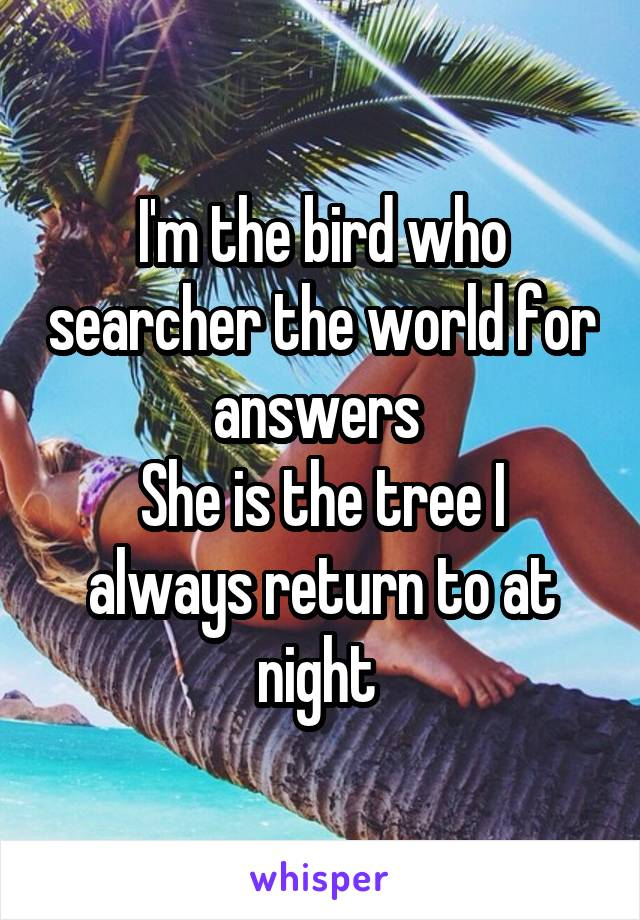I'm the bird who searcher the world for answers  She is the tree I always return to at night