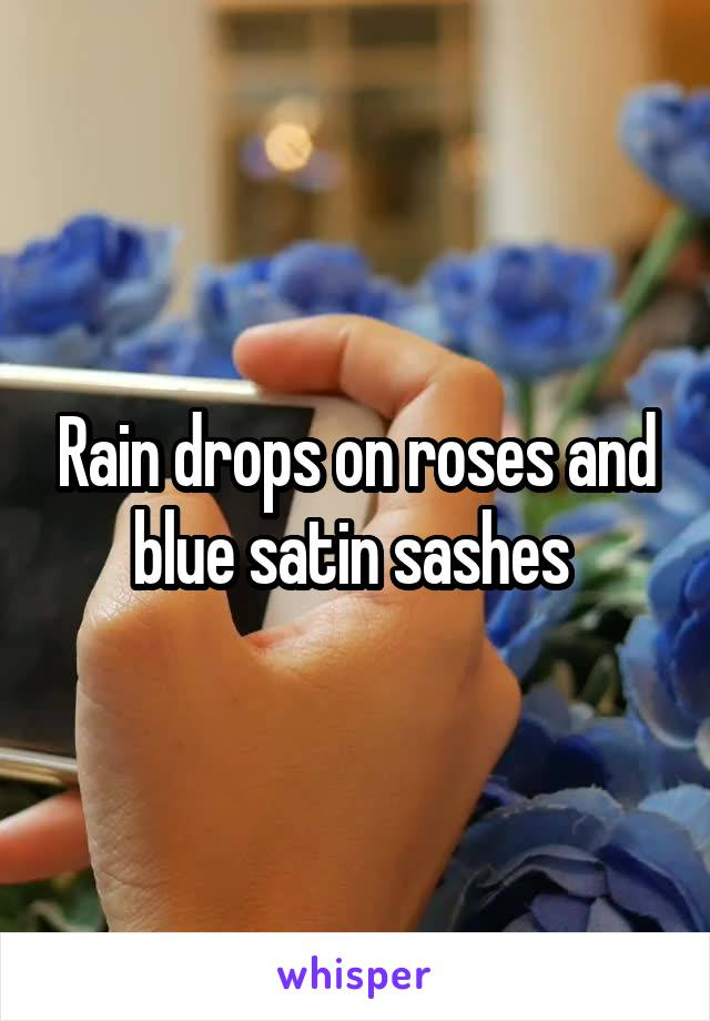 Rain drops on roses and blue satin sashes