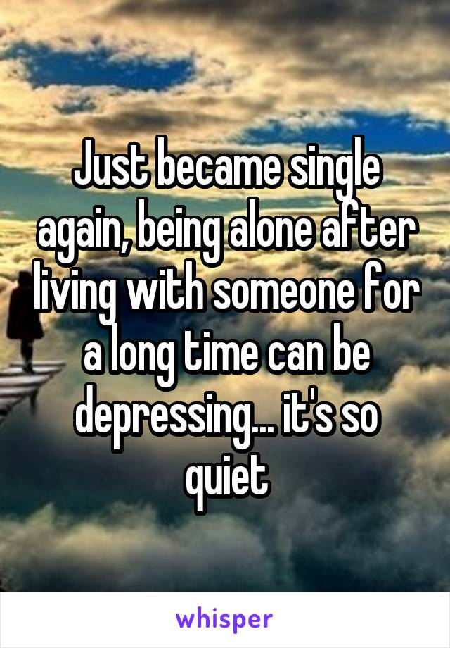 Just became single again, being alone after living with someone for a long time can be depressing... it's so quiet