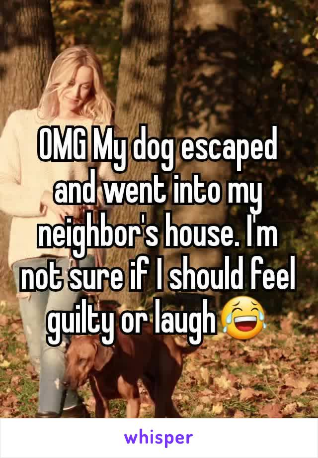 OMG My dog escaped and went into my neighbor's house. I'm not sure if I should feel guilty or laugh😂