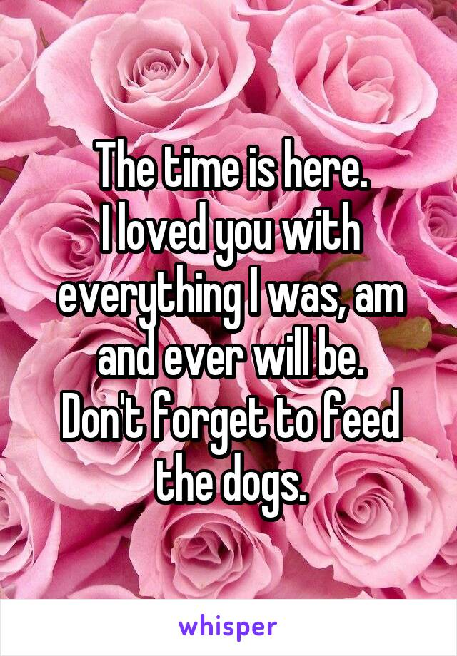 The time is here. I loved you with everything I was, am and ever will be. Don't forget to feed the dogs.