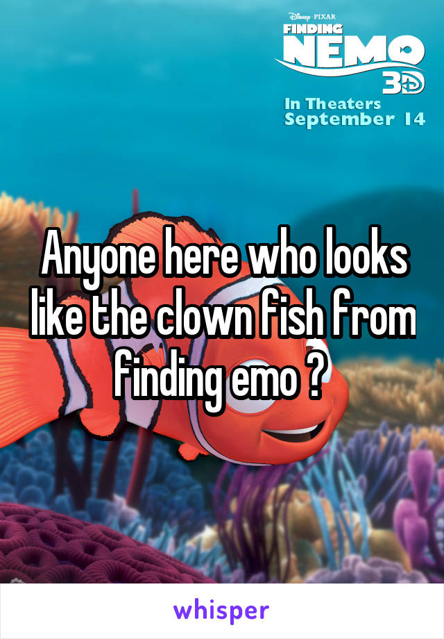 Anyone here who looks like the clown fish from finding emo ?