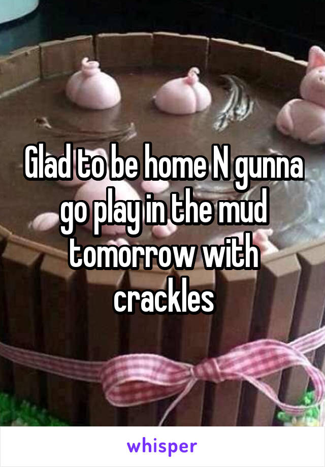 Glad to be home N gunna go play in the mud tomorrow with crackles