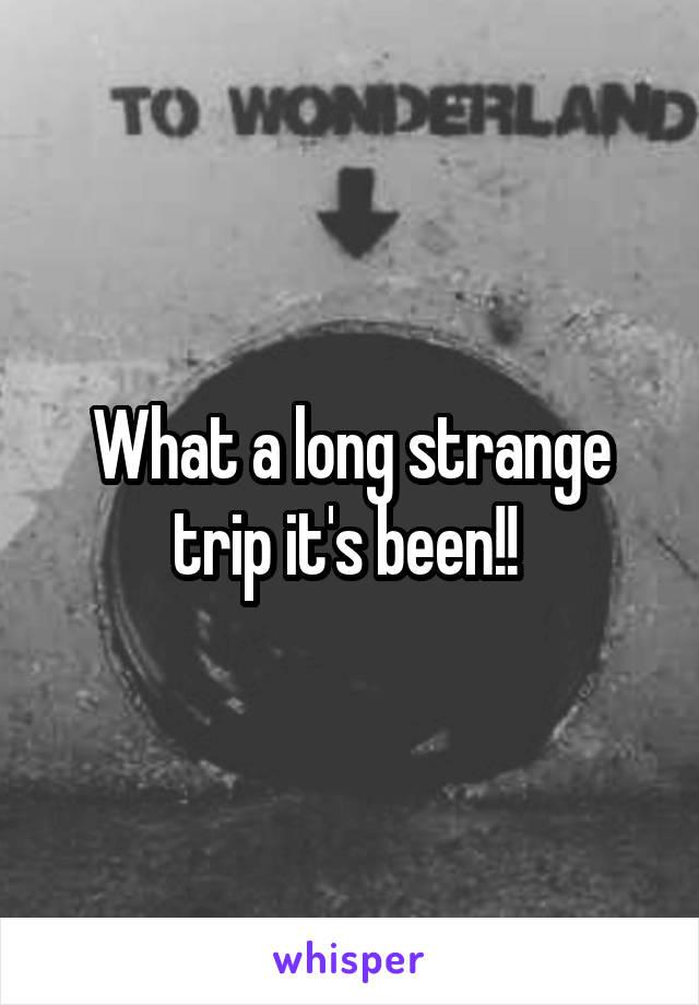 What a long strange trip it's been!!