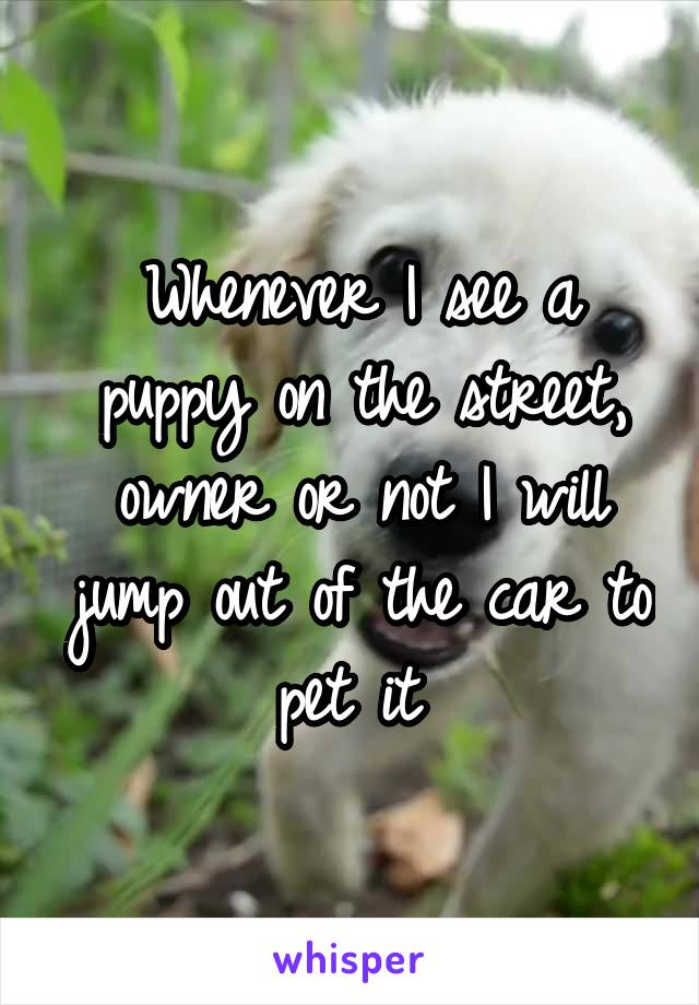 Whenever I see a puppy on the street, owner or not I will jump out of the car to pet it
