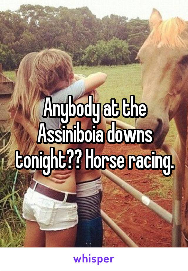 Anybody at the Assiniboia downs tonight?? Horse racing.