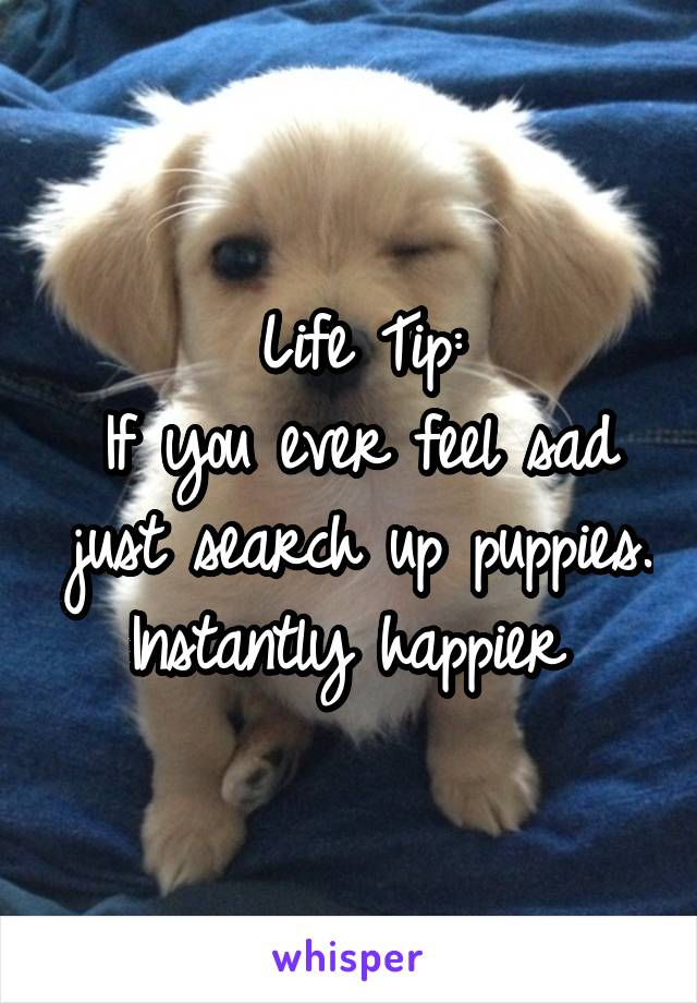 Life Tip: If you ever feel sad just search up puppies. Instantly happier