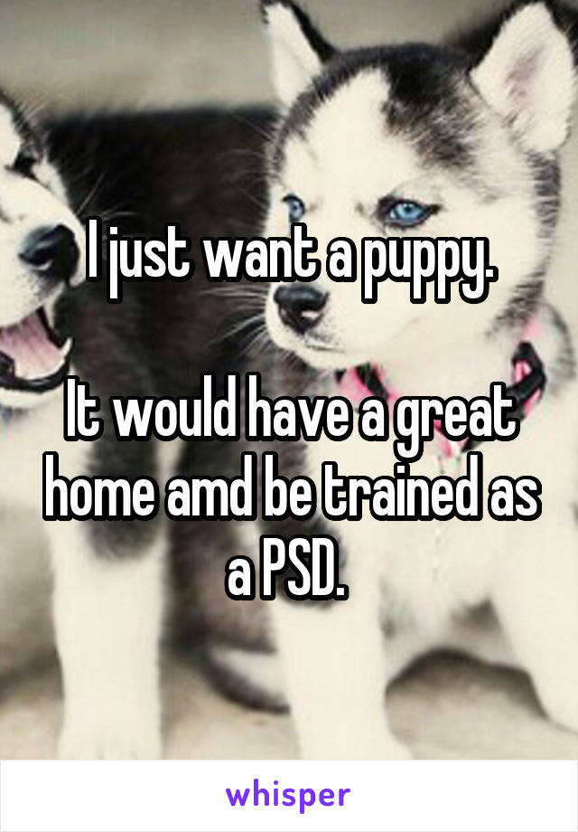 I just want a puppy.  It would have a great home amd be trained as a PSD.