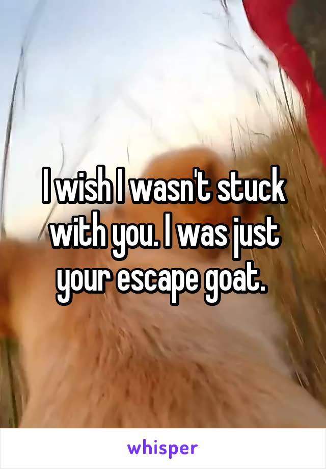 I wish I wasn't stuck with you. I was just your escape goat.