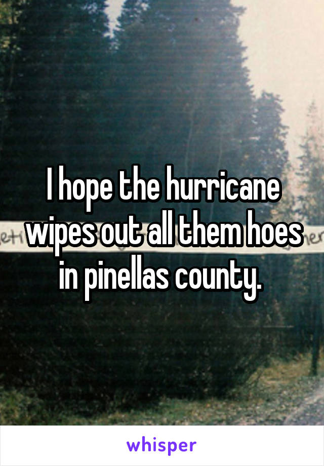 I hope the hurricane wipes out all them hoes in pinellas county.