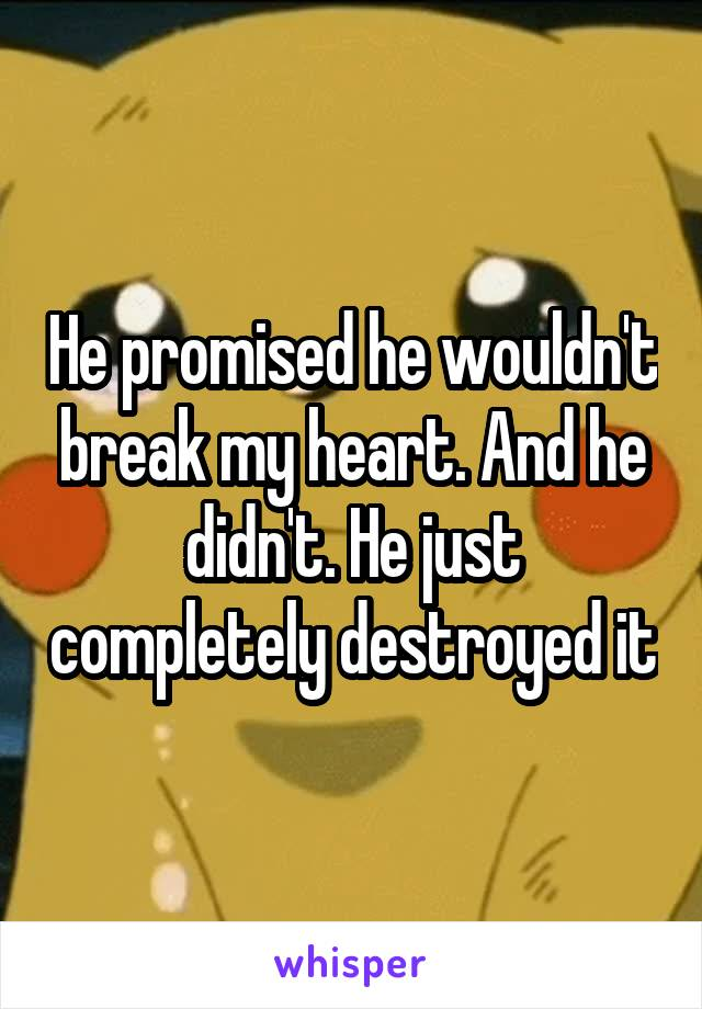 He promised he wouldn't break my heart. And he didn't. He just completely destroyed it