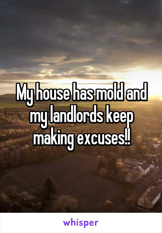 My house has mold and my landlords keep making excuses!!