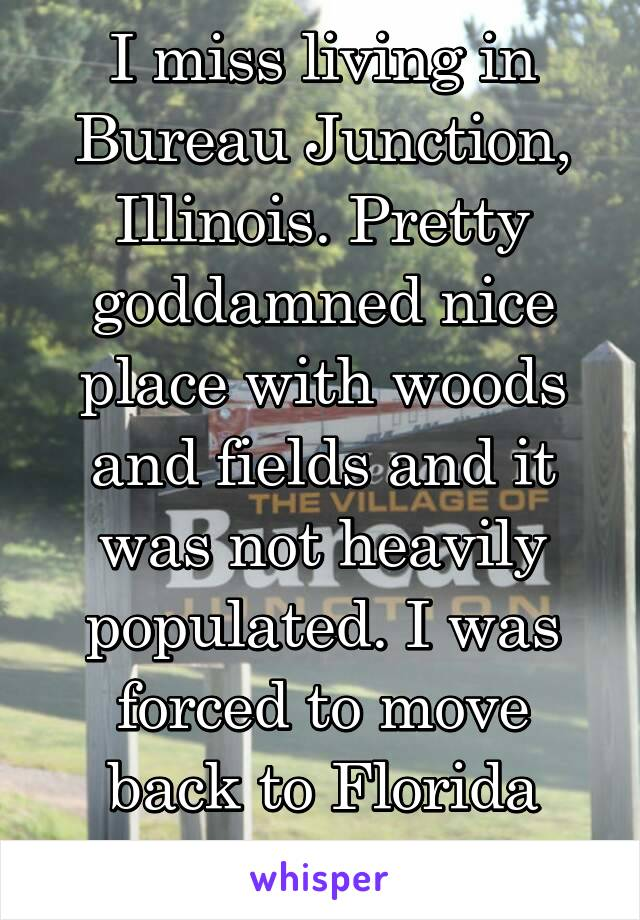 I miss living in Bureau Junction, Illinois. Pretty goddamned nice place with woods and fields and it was not heavily populated. I was forced to move back to Florida after only 2 years.
