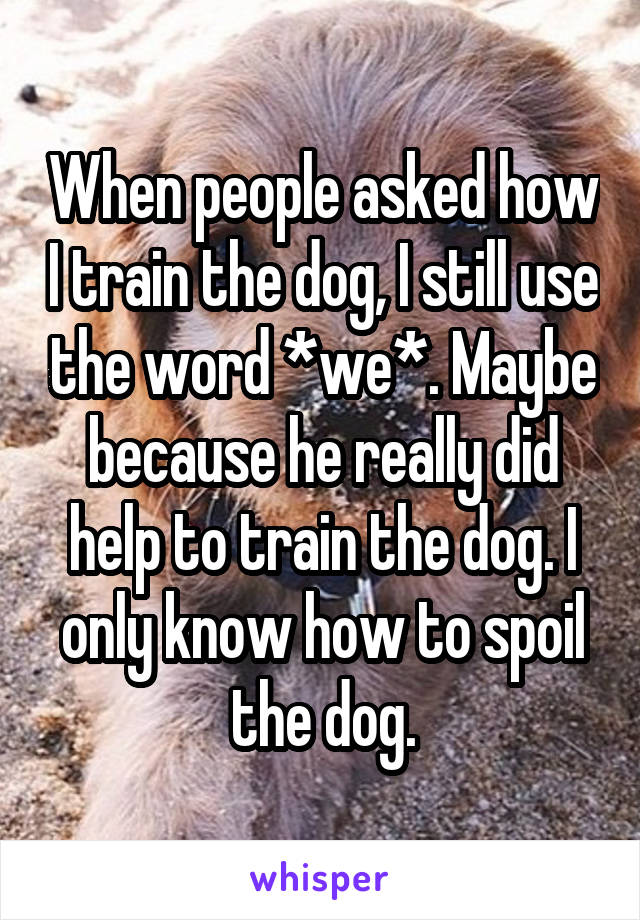 When people asked how I train the dog, I still use the word *we*. Maybe because he really did help to train the dog. I only know how to spoil the dog.