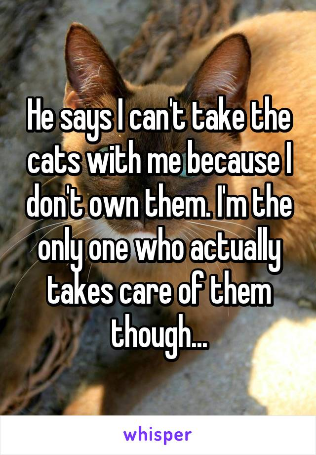 He says I can't take the cats with me because I don't own them. I'm the only one who actually takes care of them though...