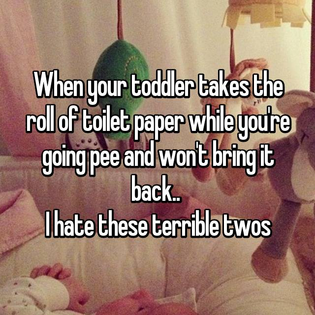 When your toddler takes the roll of toilet paper while you're going pee and won't bring it back..  I hate these terrible twos 🙄😠