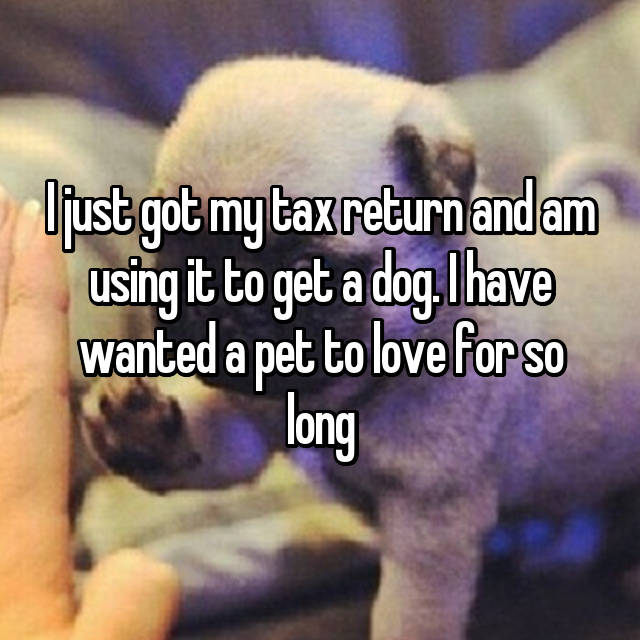 I just got my tax return and am using it to get a dog. I have wanted a pet to love for so long