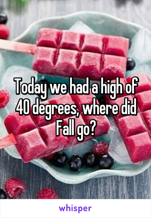 Today we had a high of 40 degrees, where did Fall go?