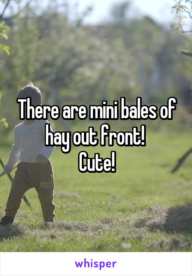There are mini bales of hay out front!  Cute!