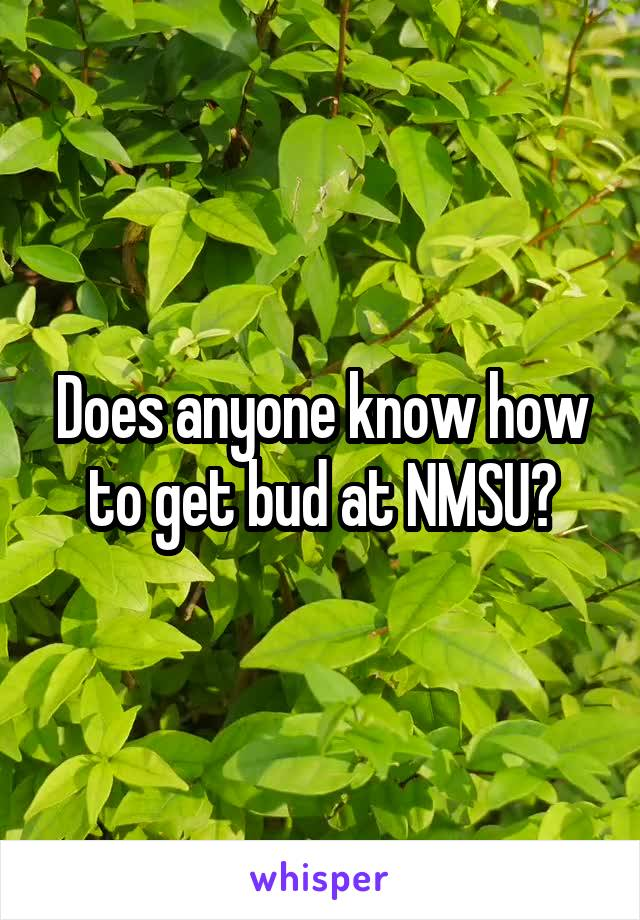Does anyone know how to get bud at NMSU?