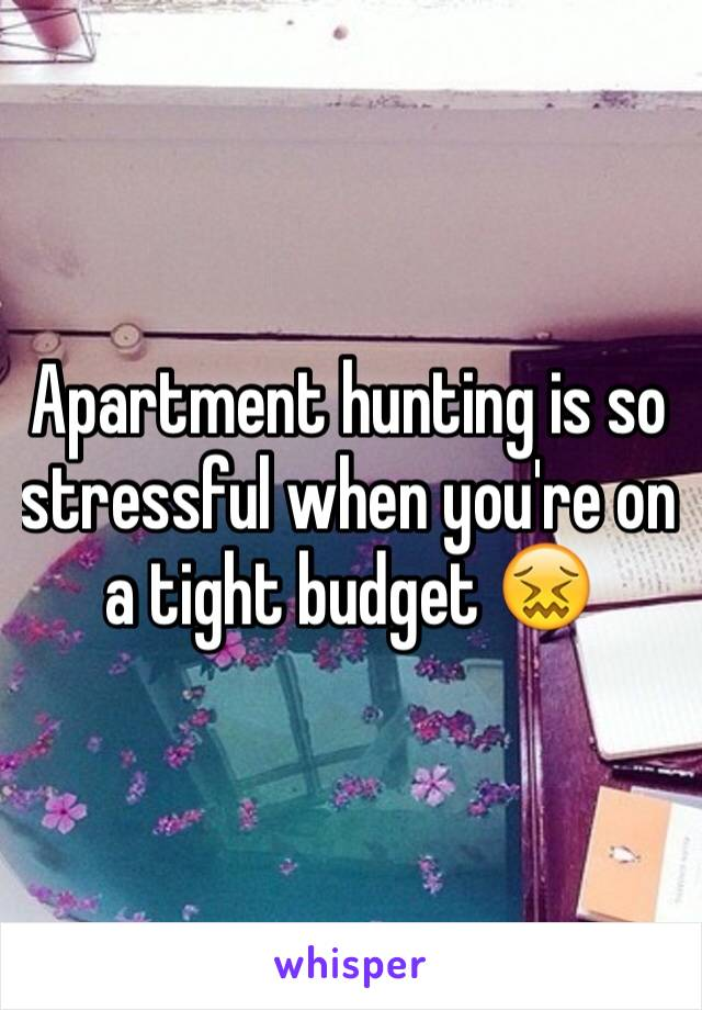 Apartment hunting is so stressful when you're on a tight budget 😖