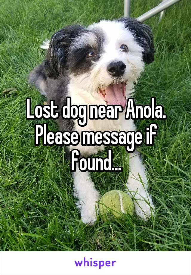 Lost dog near Anola. Please message if found...