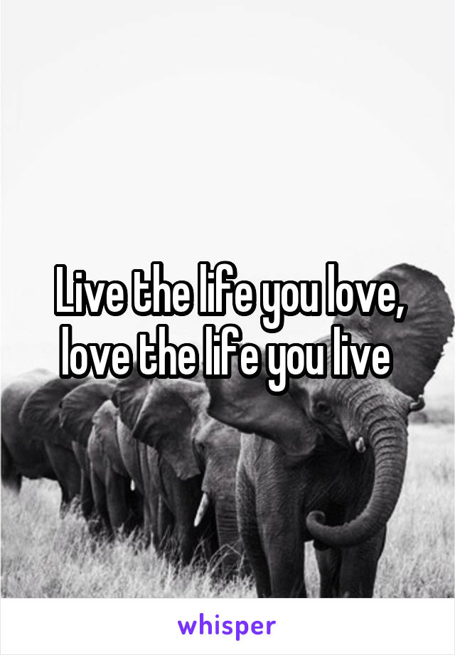 Live the life you love, love the life you live