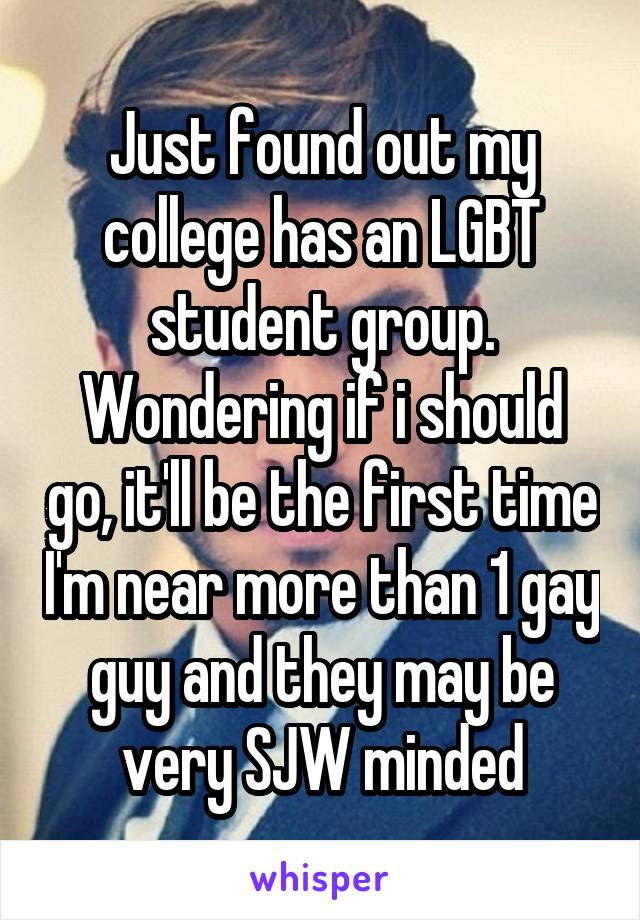 Just found out my college has an LGBT student group. Wondering if i should go, it'll be the first time I'm near more than 1 gay guy and they may be very SJW minded