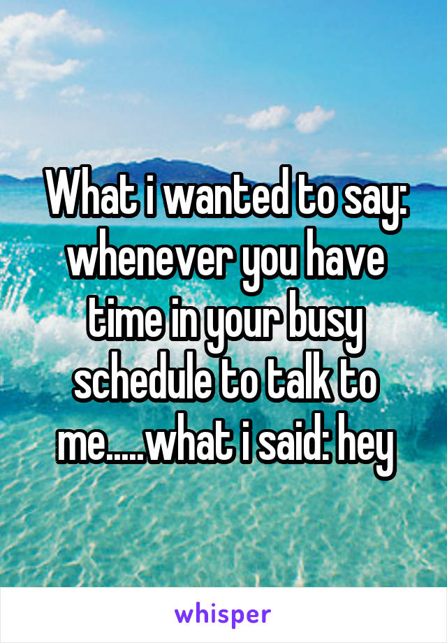 What i wanted to say: whenever you have time in your busy schedule to talk to me.....what i said: hey