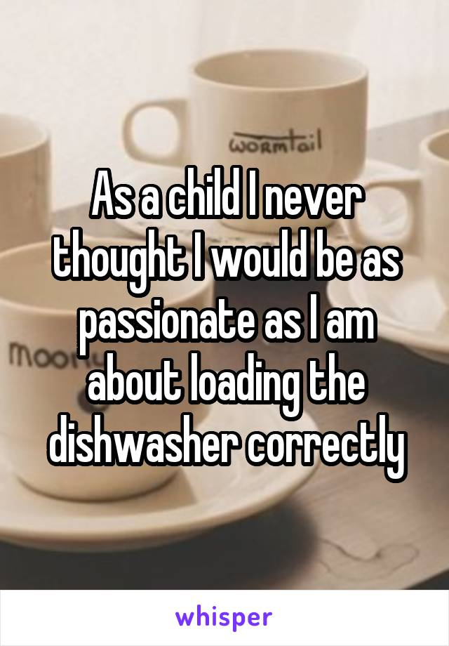 As a child I never thought I would be as passionate as I am about loading the dishwasher correctly