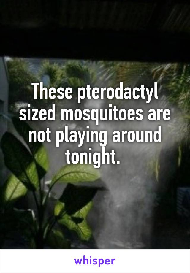 These pterodactyl sized mosquitoes are not playing around tonight.