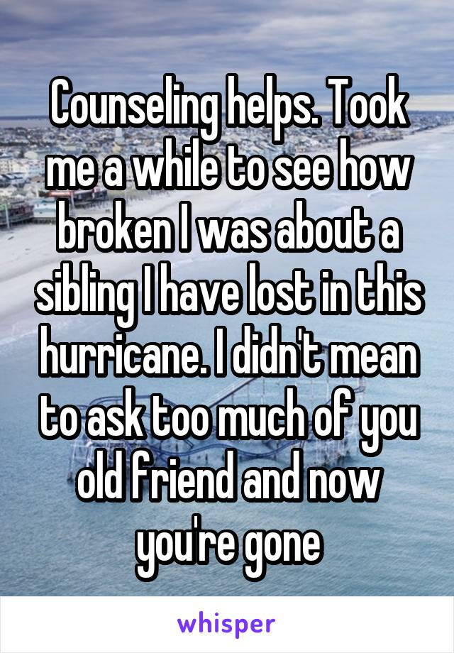 Counseling helps. Took me a while to see how broken I was about a sibling I have lost in this hurricane. I didn't mean to ask too much of you old friend and now you're gone