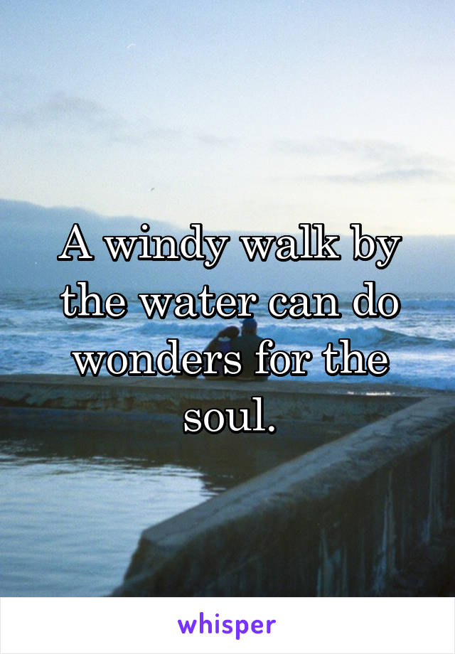 A windy walk by the water can do wonders for the soul.