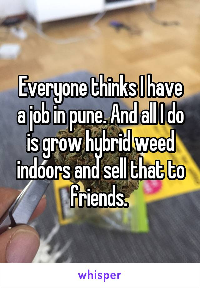 Everyone thinks I have a job in pune. And all I do is grow hybrid weed indoors and sell that to friends.