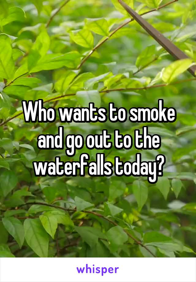 Who wants to smoke and go out to the waterfalls today?