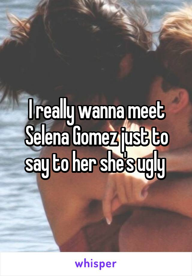 I really wanna meet Selena Gomez just to say to her she's ugly
