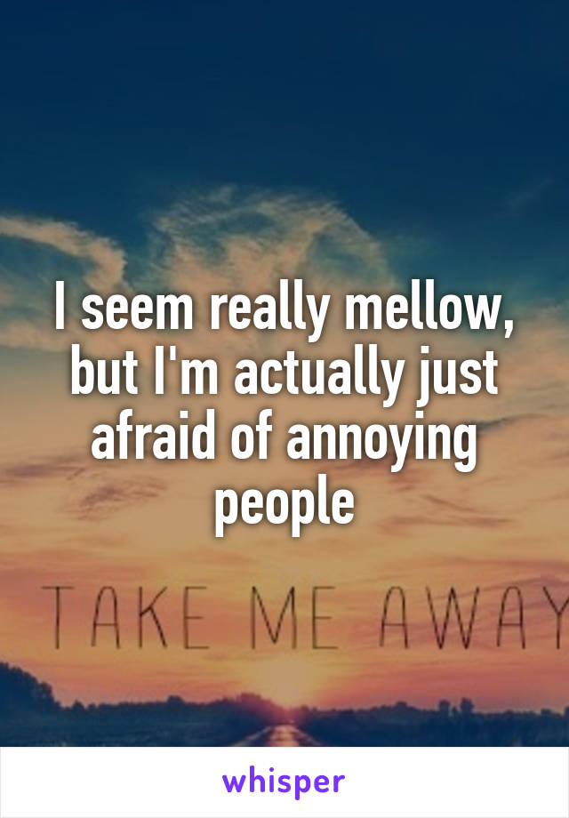 I seem really mellow, but I'm actually just afraid of annoying people