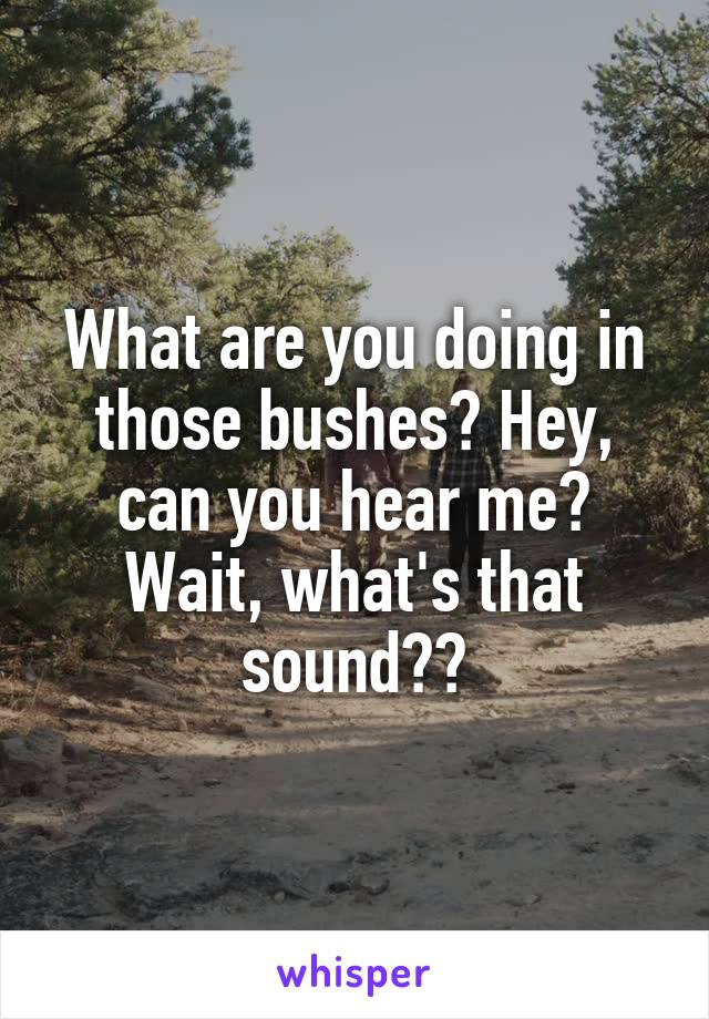 What are you doing in those bushes? Hey, can you hear me? Wait, what's that sound??