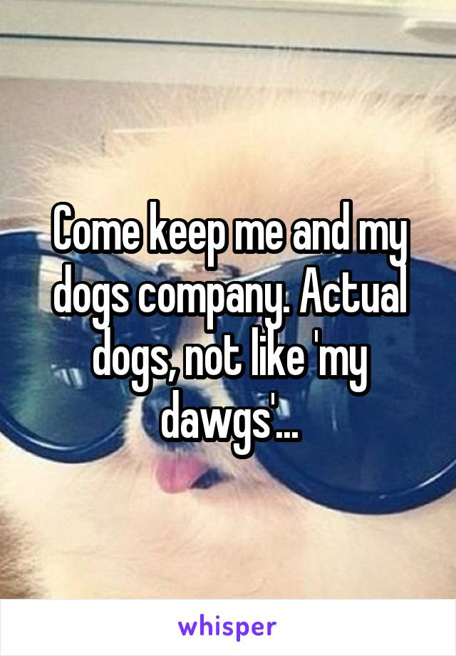 Come keep me and my dogs company. Actual dogs, not like 'my dawgs'...