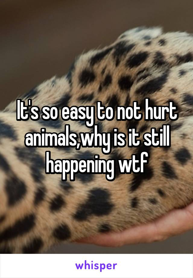 It's so easy to not hurt animals,why is it still happening wtf