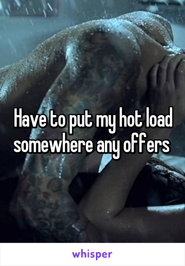 Have to put my hot load somewhere any offers